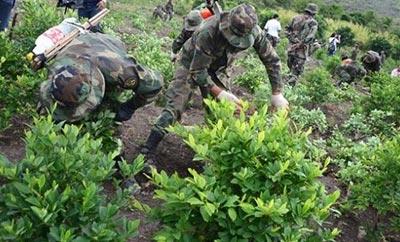 2014: Bolivia's Drug Policy