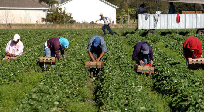 February 5th, 2021: Vaccines for farmworkers